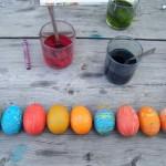 oeufs-colores