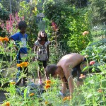 une colo pour jardiner