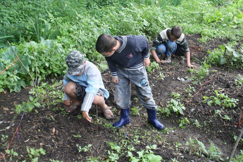 jardiner-en-bottes