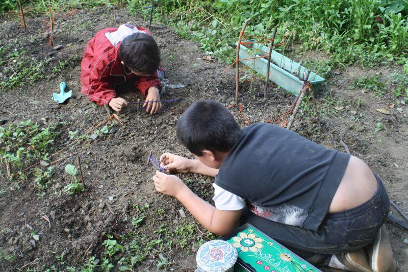 jardiner-petite-graine